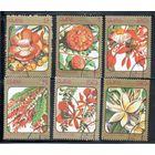 Флора Цветы Куба 1984 год серия из 6 марок