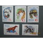 Собаки ссср 1965 г 5 марок