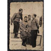 Фото группы военных. Август 1943 г. Румыния. 6х8 см