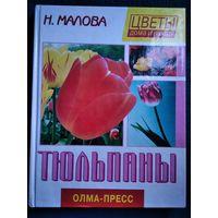 Н. Малова Тюльпаны