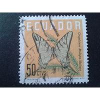 Эквадор 1961 бабочка 50с