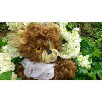 Мишка СССР, медведь- советская мягкая игрушка кудрявый мех