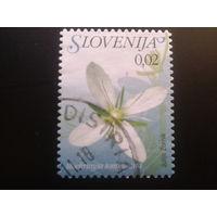 Словения 2011 стандарт, цветы