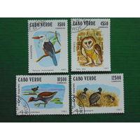 Кабо-Верде 1981г. Птицы.