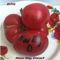 Семена томата New Big Dwarf