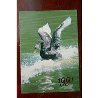 Календарик 1991 г. Лебедь.