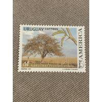 Уругвай 2003. Nandubay Prosopts Affinis