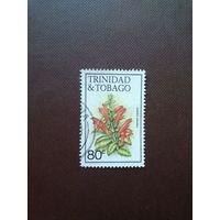 Тринидат и Тобаго 1983 г.Колумнея scandens.