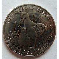 Южная Георгия и Южные Сандвичевы острова 2 фунта 2006 г