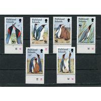 Фолклендские острова. Фауна. Королевский пингвин