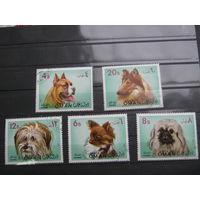 Марки - фауна, Оман,  собаки