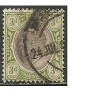 Трансваль. Король Эдуард VII. 1902г. Mi#106.