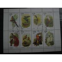 Марки - фауна, Оман, птицы, попугаи и др