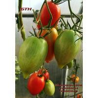 Семена томата Минусинские стаканы красные