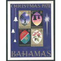 Багамы 1972 блок Рождество флора фауна религия гербы **