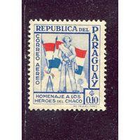 Парагвай. Солдат с флагом