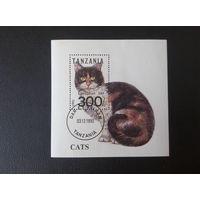 1992. Танзания. Кошки