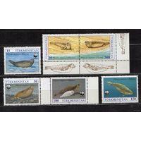 1993 Туркменистан. Морская фауна. Тюлени