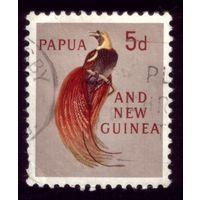 1 марка 1961 год Папуа Новая Гвинея 31