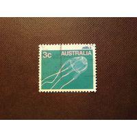 Австралия 1986 г.Медуза.