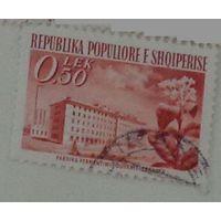 Табачная фабрика в Шкодре. Албания. Дата выпуска:1953-08-01
