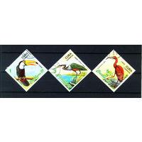 1989 Куба. Птицы