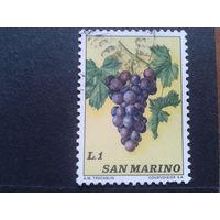 Сан-Марино 1973 виноград