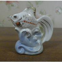 Золотая рыбка Полонное