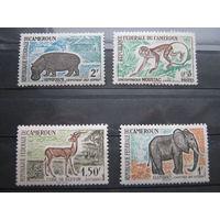 Марки - фауна, Камерун, 4 шт