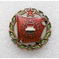 Значок Социалистическая бригада. Венгрия L-P05 #0334