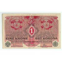Австро-Венгрия, 1 крона 1916 год