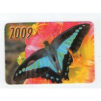 2009 бабочка (9)