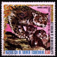 Кошки. Экваториальная Гвинея. 1976. Леопард. Марка из серии. Гаш.