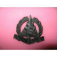 Кокарда Гражданской Оборны Армии обороны Израиля (ЦАХАЛ)