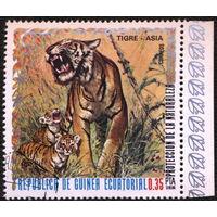 Кошки. Экваториальная Гвинея. 1976. Тигр. Марка из серии. Гаш.