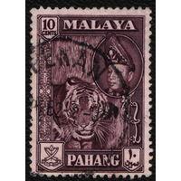 Кошки. Малайя, Паханг. 1957. Тигр. Марка из серии. Гаш.