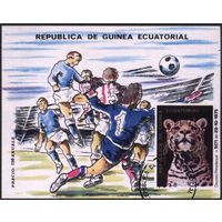 Кошки. Экваториальная Гвинея. 1976. Гепард. ЧМ по футболу в Аргентине. Блок, гаш.
