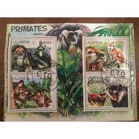 Уганда 2012. Приматы (блок)