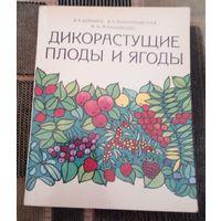 Дикорастущие плоды и ягоды.