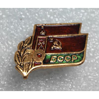 Значок.70 лет БССР #0743