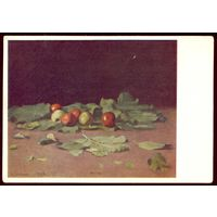 И.Е.Репин яблоки и листья 1957 год