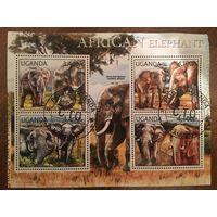Уганда 2012. Африканские слоны (блок)