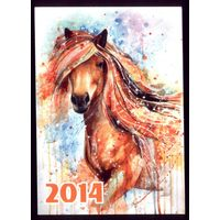 Лошадь 2014