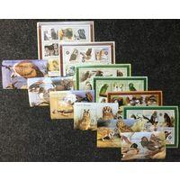 Гвинея-Бисау Птицы Орлы Совы Попугаи Утки 2001 год чистая полная серия из 6-ти листов и 6-ти блоков