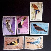 Панама 1965 г. Птицы. Фауна, полная серия из 6 марок #0198-Ф1