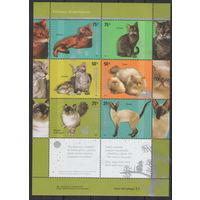Аргентина Кошки 2005 год чистая полная серия из 6-ти марок в листе