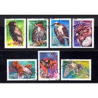 1994 Танзания. Хищные птицы