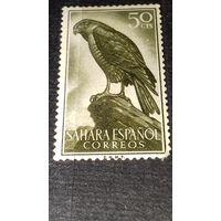 Испанская Сахара 1959 Фауна Птицы чистая марка