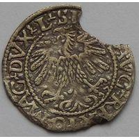 Полугрош 1559 г