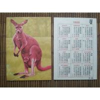 Карманный календарик . Кенгуру. 1986 год